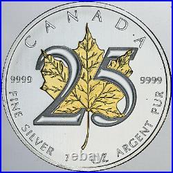 2013 Canada 5$ Gold Gilded Maple Leaf 1 Oz. 999 Silver Coin In Box Amazing Gem