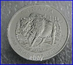 2013 MAPLE LEAF BUFFALO CANADA SILVER COIN $5 DOLLARS x 25, TUBE WOOD BISON GEM