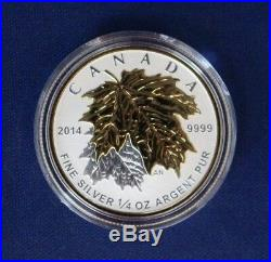 2014 Canada Silver Proof 5 coin set The Maple Leaf in Case with COA (H8/124)
