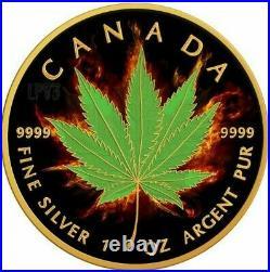 2017 1 Oz Silver $5 BURNING MARIJUANA INDICA MAPLE Ruthenium Coin With 24K GOLD