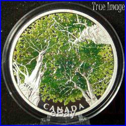 2018 Canadian Canopy The Maple Leaf $30 Pure Silver Proof Coin Canada