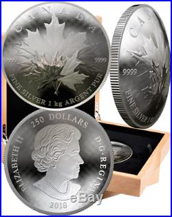 2018 Maple Leaf Forever $250 1-Kilogram Pure Silver Proof Convex Coin Canada