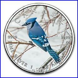 2019 $5 Canada Wildlife Maple Leaf BLUE JAY 1 Oz Silver Coin
