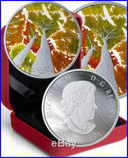 2019 Maple Canopy Canadian Goose $30 2OZ Pure Silver Proof 50mm Coin Canada