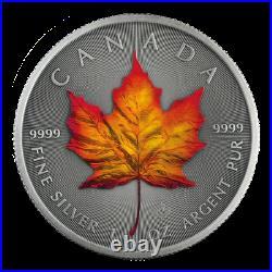 2020 Canada 1 oz Silver Maple Leaf Four Seasons 4-Coin Set 500 Made