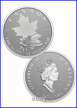 2022 Canada Silver Maple Leaf 5-Coin Set Radiant Crown Reverse Proof OGP