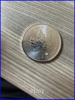 25 X 1 Oz Silver 2019 Canadian Maple Leaf