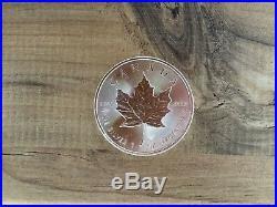 25 x 1 oz Canadian Maple Leaf 2015 Silver Coins (£18 per ounce!)