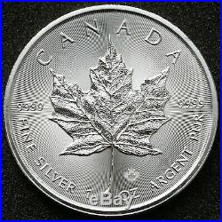 25x 2019 1 oz Canadian Silver Maple Silver Bullion Coin in tube / 999.9 Silver