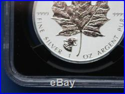 CANADA 2017 $5 Cougar Privy Reverse Proof Silver Maple Leaf NGC PF70 1st Rel