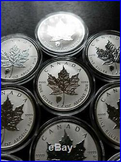 LOT (10) 2018 Canadian Maple Leaf Bison Reverse Privy 1 oz. 9999 $5 Silver Coin